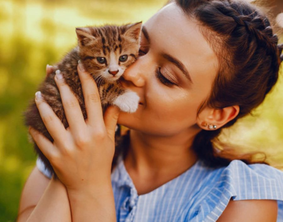 Best Creative Ideas for Starting a Pet Business